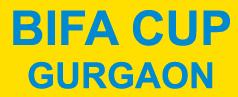 BIFA logo copy
